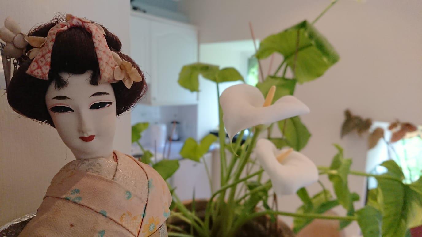 Arum Lily and Geisha