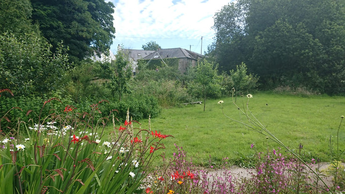 View from the community permaculture garden