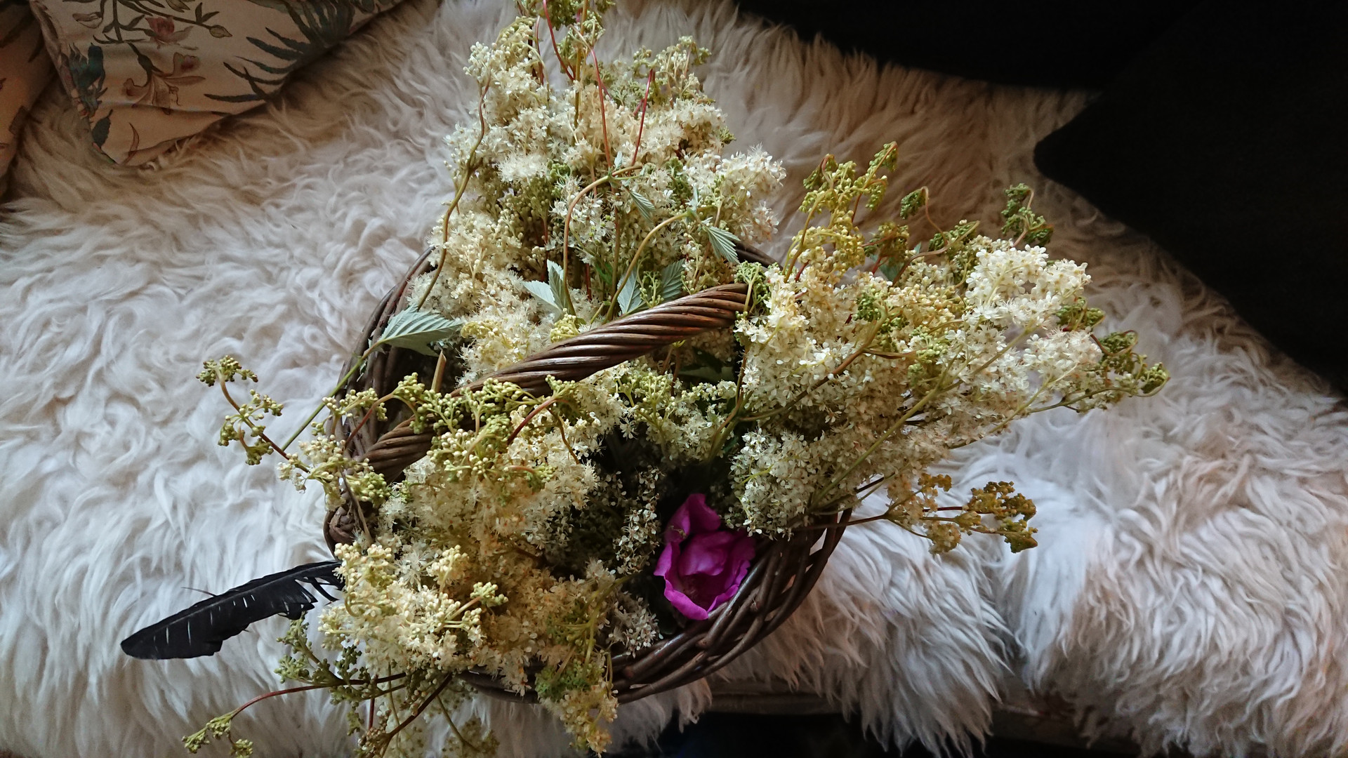 Wild crafted Meadow Sweet and Roses in summer