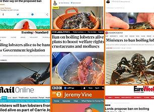 Media collage_edited.jpg