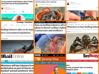 Decapods in the Media