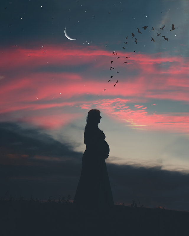 beautiful-dawn-evening-1717292.jpg