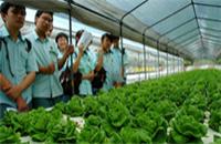 高科技农业园考察