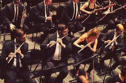 In the Orchestra - Theatro São Pedro