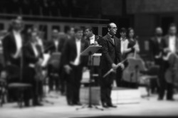 Mozart K314 - Sala São Paulo