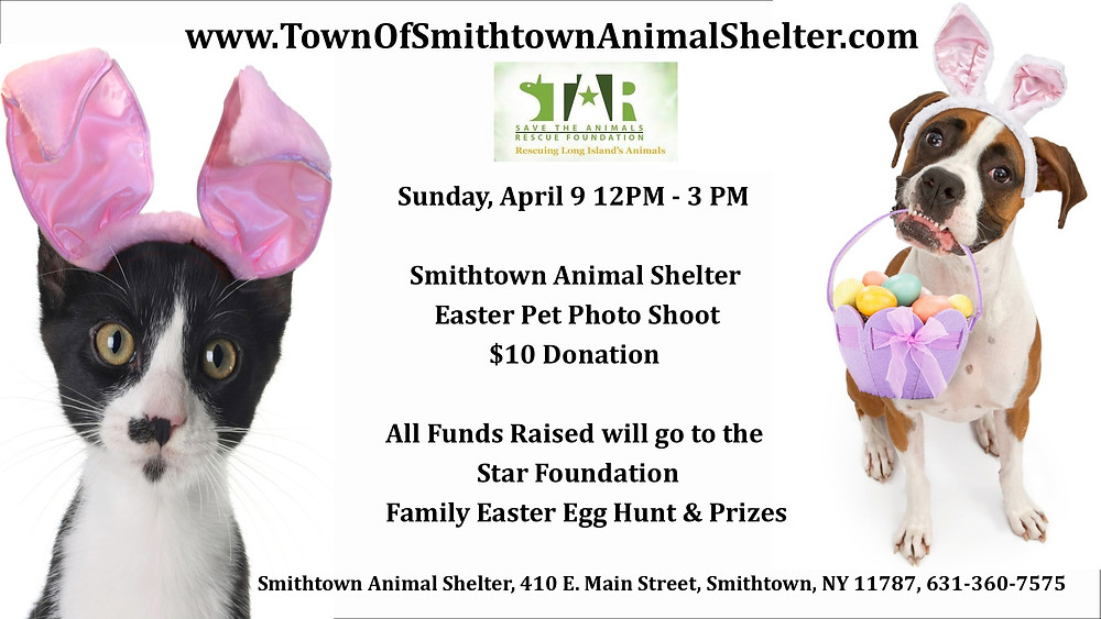 Your pets are invited to a Photo Shoot at the Smithtown Animal Shelter! Donations will go to the Star Foundation. Family Easter Egg Hunt & Prizes too!