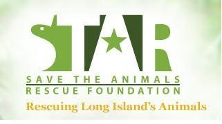 Click Star Foundation Image for more information