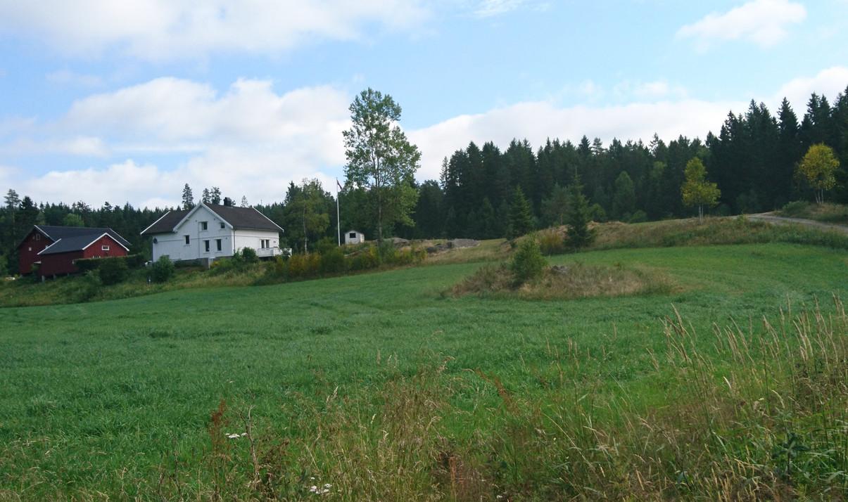 Villskog