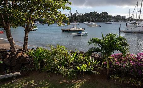 Сент Винсент и Гренадины.png