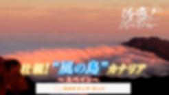 アールビット空撮 NHK グレートネイチャー 空撮 海外 ロケ テレビ 放映