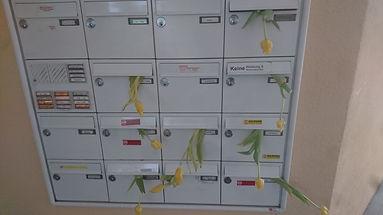 Tulip Mailbox.JPG