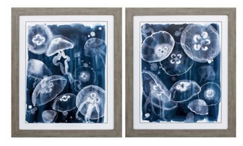 Moon Jellies (sold separately)