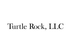 turtle rock.png