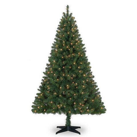 Pre-Lit Windham Spruce Tree 6 FT