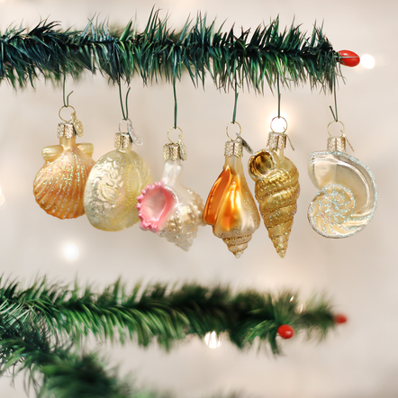 Old World Christmas Assorted Sea Shell Ornament Set