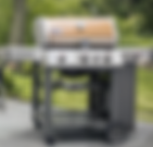 weber grill.png