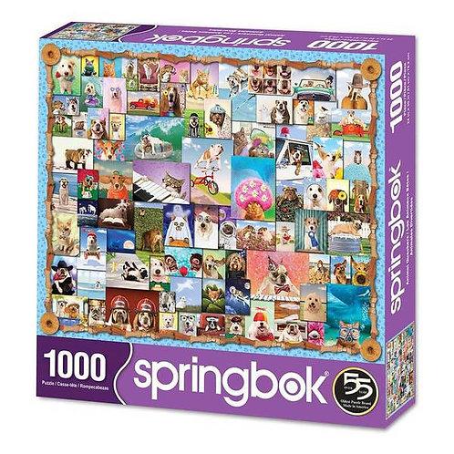 PUZZLE 1000 ANIMAL QUAKERS