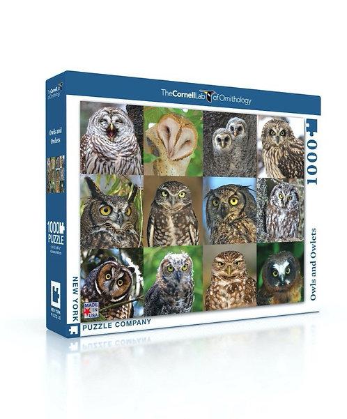 PUZZLE 1000 OWLS OWLETS