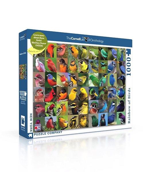 PUZZLE 1000 RAINBOW OF BIRDS
