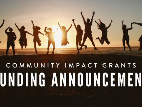 New Funding Guidelines for 2020 Grant Cycle