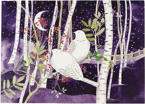 Doves in White Birch - Box (20 cards)