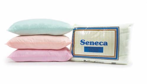 Seneca Standard Pillow