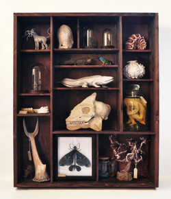 Cabinet of foreign curiosities