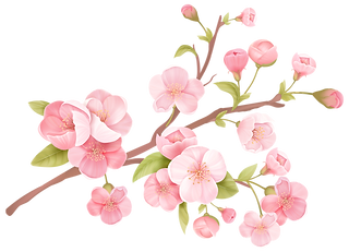 blossom_5.png