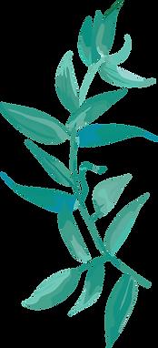 푸른식물2.png