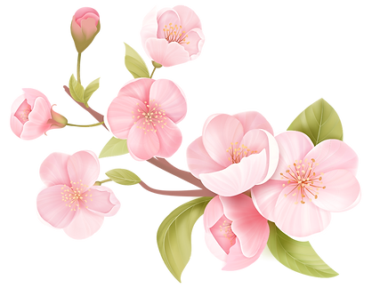 blossom_3.png