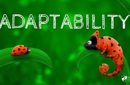 Off-Season-Adaptability