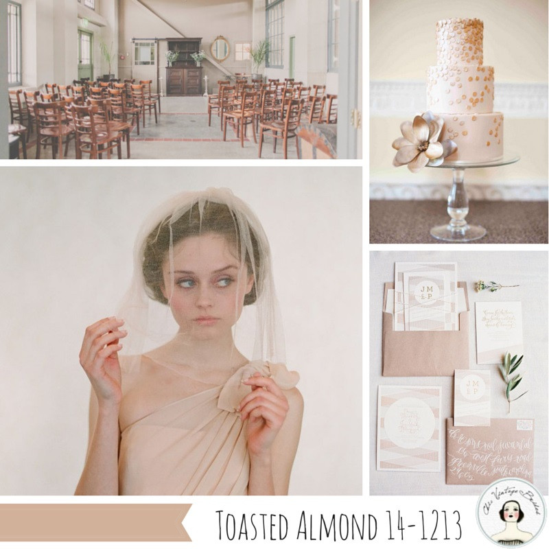 Toasted-Almond.jpg