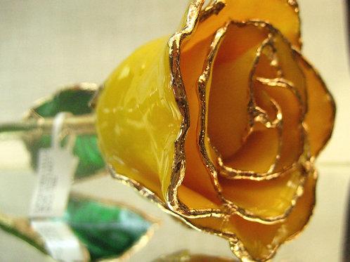 24kt Yellow Rose