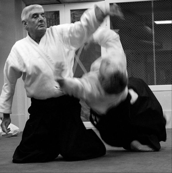 andres dominguez aikido.jpg