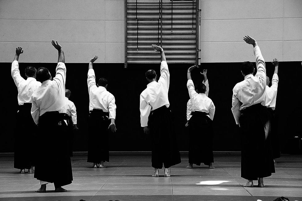 aikido-4018640_1920.jpg