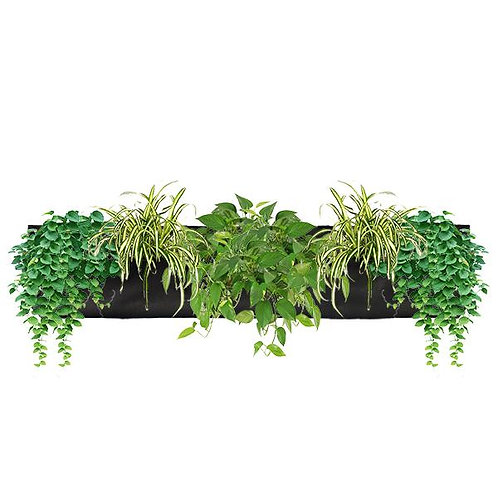 https://www.verticalgarden.co.nz/product-page/wally-3