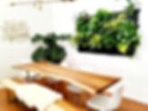 Wally Pro Pockets Dining Room 2.jpg