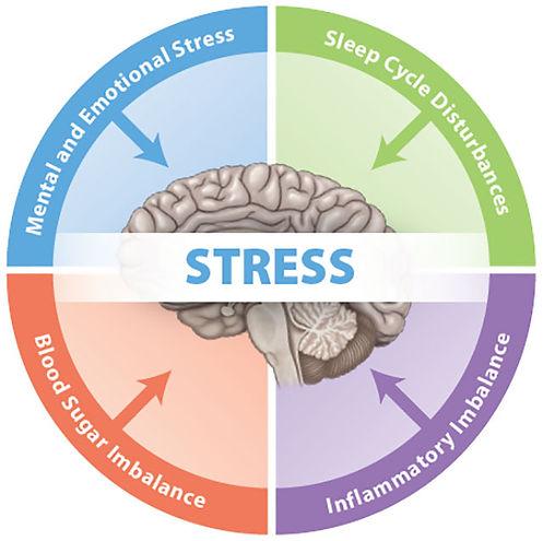 4-key-stressors640.jpg
