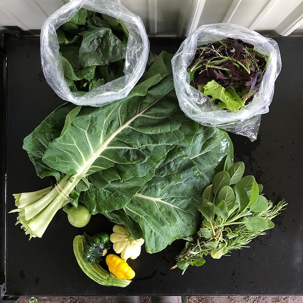 Weekly Veggie Share