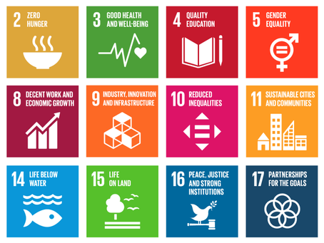 The Ellamo Foundation with the Global Goals.