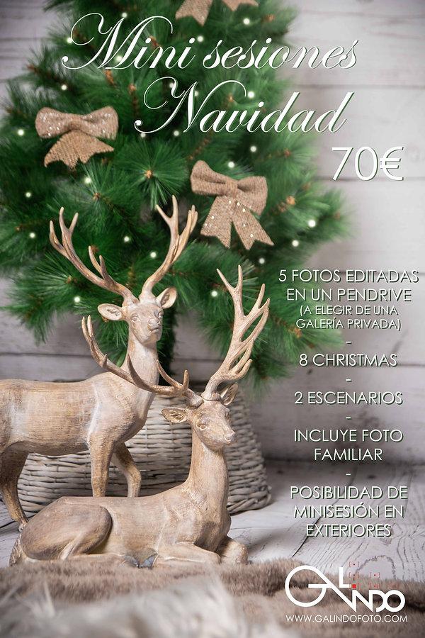 Flyer01_Navidad2020.jpg