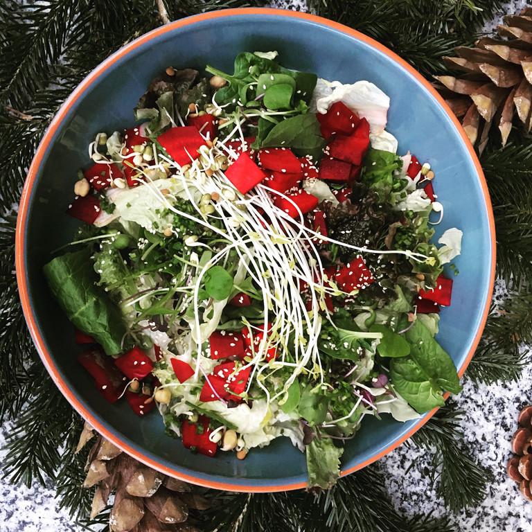 Herbstsalat mit knackiger rote Beete, Sesam und Spargelsprossen