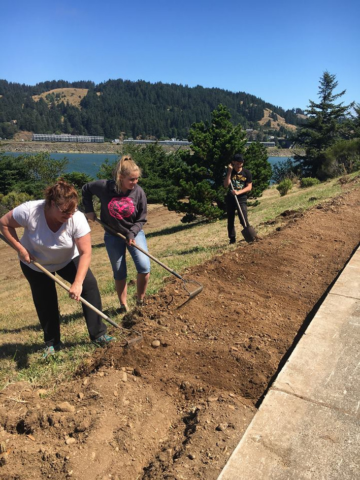 Latter Day Saints of Gold Beachh have adopted the north port sidewalk planting!
