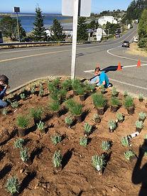 Replanting the Wedderburn Triangle