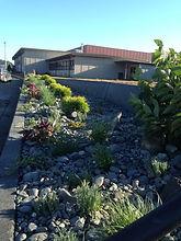 Updates to garden beds at Gold Beach High School