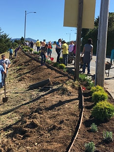 Volunteers working on the flower beds