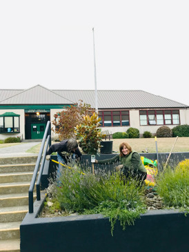 Kevin Swift and the high school civics club has adopted the high school plantings!