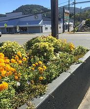 Gold Beach High School's Flowerbed Update