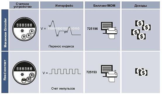 coder-reed.jpg