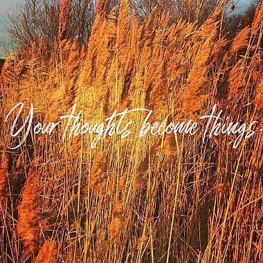 'Your thoughts become things'_🧡_Rhonda